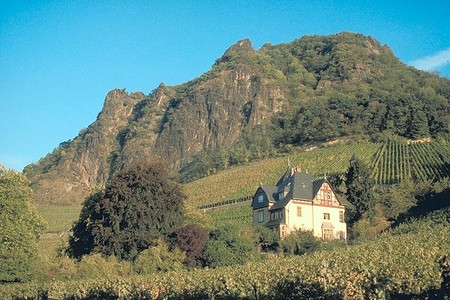 Drachenfels Siebengebirge From Rhondorf