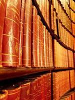 Nueva regulación para los Colegios Profesionales