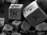 Increíbles imágenes de objetos comunes realizadas con un microscopio de barrido
