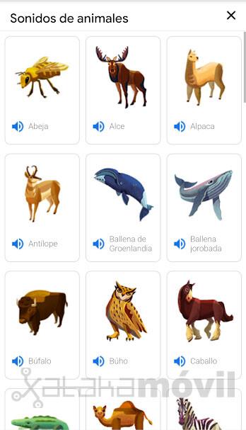 Sonido Animales