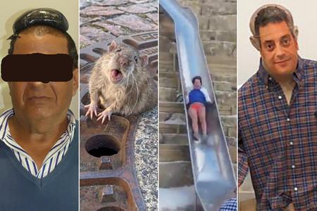 Las 25 noticias reales más surrealistas que han sucedido en este 2019
