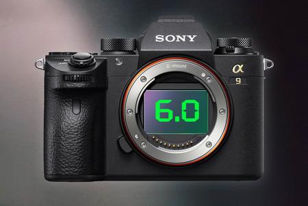 Ya disponible para descargar el firmware 6.0 de la Sony A9 que añade Eye AF en tiempo real para animales y disparo a intervalos