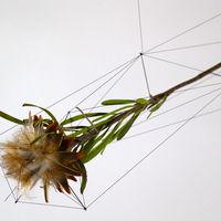Estas esculturas del artista Norihiko Terayama te harán ver las flores secas de otra manera