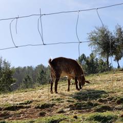 Foto 1 de 13 de la galería canon-eos-rp en Xataka Foto