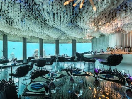 Sip On Drinks While Getting Up Close Views Of Sea Life In The Indian Ocean At Subsix The Worlds First Underwater Nightclub In The Niyama Resort Of The Dhaalu Atoll Located In The Maldives