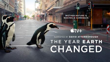 Esta semana en Apple TV+: más fichajes, más episodios y cómo la fauna invadió las calles durante la pandemia
