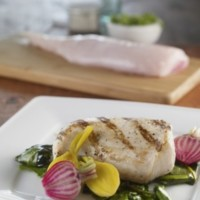 Carne de yacaré, más sana que el bife, el pollo, el cerdo y el pescado