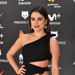 Las peor vestidas de los Premios Feroz 2017