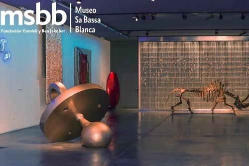 Visita al Museo Sa Bassa Blanca: naturaleza, arte y arquitectura en Alcúdia, Mallorca
