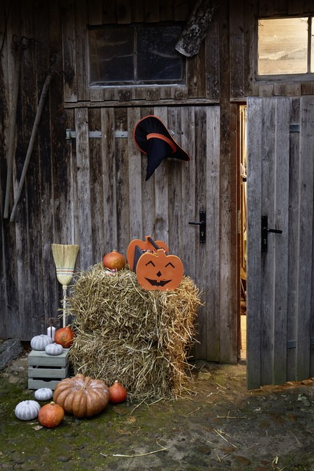 Bosch Hg Halloween Without Tool