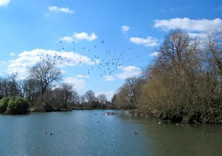 Lago Alexandra Park