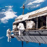 El volumen cerebral de los astronautas cambia debido a los viajes largos por el espacio