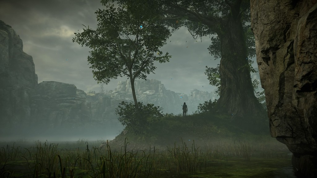 Shadow Of The Colossus Tm 20180128102117