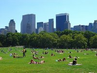 Nueva York: finalmente se prohíbe fumar en algunos espacios públicos