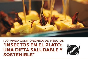¿Serías capaz de preparar grillos al ajillo para cenar? I Jornada Gastronómica de insectos