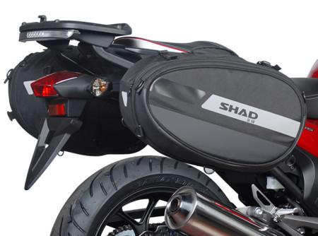 Shad Sl58 01