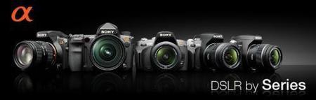 Rumor: Nuevas Sony A230, A330 y A380