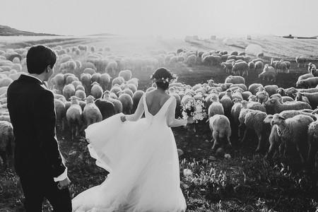 Best Wedding Photos 2015 People Producciones