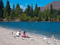 Cinco cosas gratis que hacer en Queenstown, Nueva Zelanda