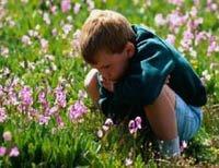 Es necesario prevenir los efectos de las alergias durante esta primavera