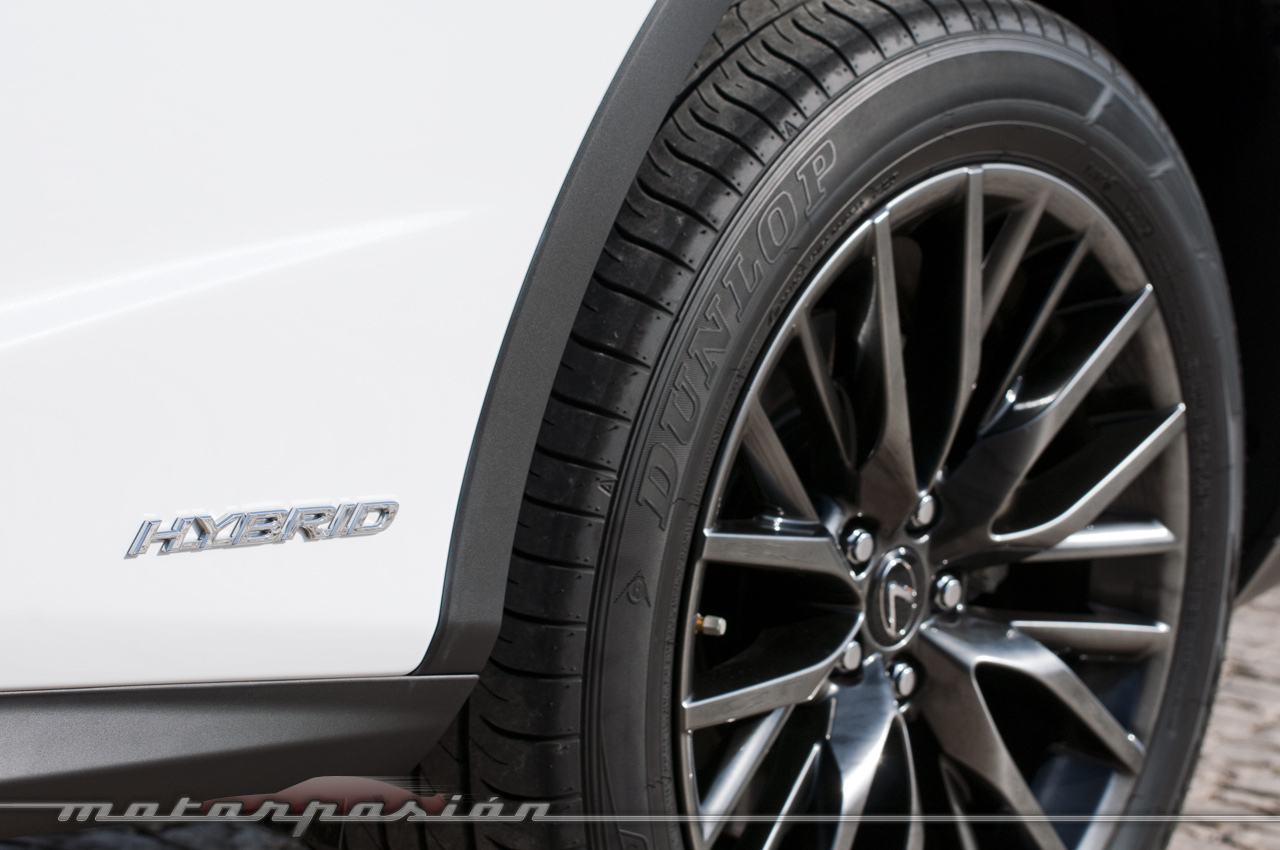 Foto de Lexus RX 450h, toma de contacto (14/28)