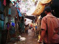 Slumdog Millionaire Tours: un subproducto del cine