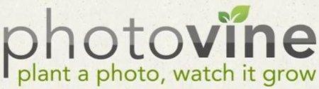 Google hasta en la sopa, ahora lanza Photovine