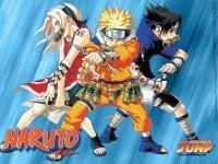 Naruto saldrá en USA