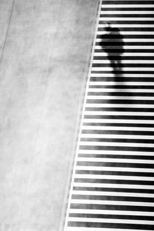 Foto de 'In Shadow/En Sombra', de Jose Luis Barcia Fernández (6/14)