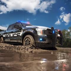 Foto 4 de 9 de la galería ford-f-150-police-responder en Motorpasión México