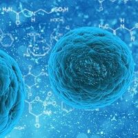 Se estima que casi uno de cada diez hombres que tienen sexo con otros hombres podría tener sífilis