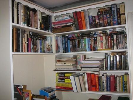 Los niños en cuyas casas hay dos o más estanterías con libros, tienen muchas posibilidades de ser buenos estudiantes