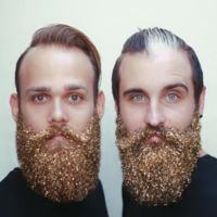 El extraño caso de las barbas impregnadas en polvo de hadas, ¡mientras no salgan volando como Campanilla!