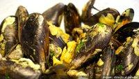 Receta en vídeo de mejillones a la bretona