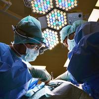 Los médicos canadienses creen que cobran mucho, así que han pedido que les bajen el sueldo