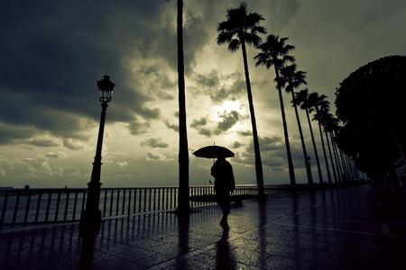 Fotografiando Bajo La Lluvia 14