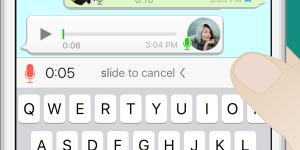 Whatsapp Voz 1