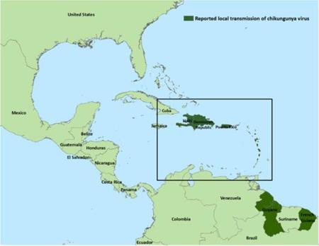 Información sobre el virus Chikungunya