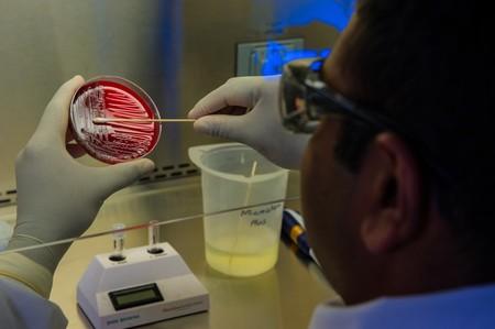 Cuanto más virus, más daño en los órganos: una prueba rápida muestra cómo anticiparnos a los peores casos de COVID-19
