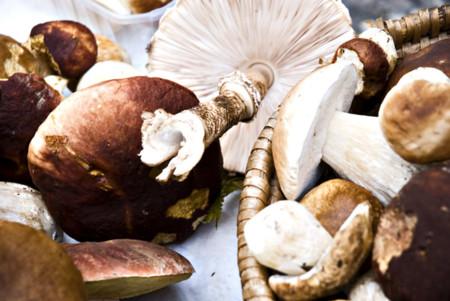 Tu dieta semanal con Vitónica (CLXX): con ideas para consumir setas este otoño