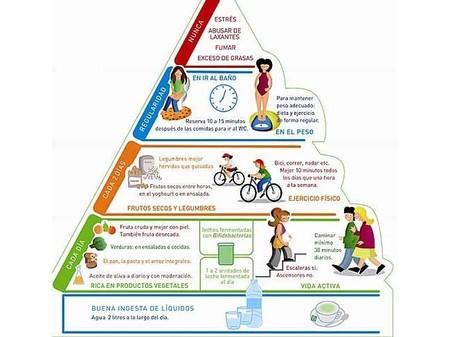 pirámide FAO