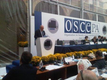 La OSCE asegura que los tres avisos son incompatibles con la libertad de expresión