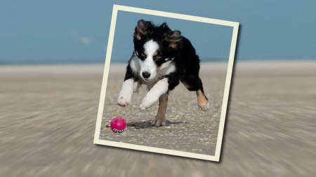 Tutorial Photoshop: cómo destacar al protagonista de tus fotos