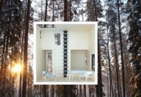Tree Hotel, te descubrimos el hotel más ecológico y original del mundo