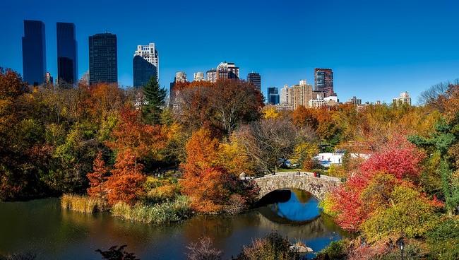 Central Park 1804588 960 720