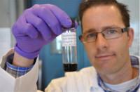 Un estudio indica que el prometedor grafeno no lo es tanto con el medioambiente