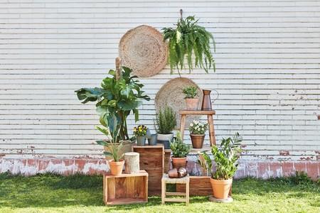Muy Mucho nos da las claves para darle un aire sostenible a tu hogar