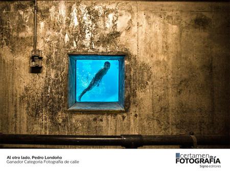 Fotografia De Calle Ganador