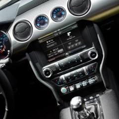 Foto 18 de 24 de la galería 2015-ford-mustang-50-year-limited-edition en Motorpasión