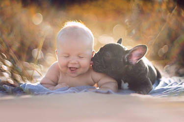 La preciosa historia de un bebé y un perro que nacieron el mismo día y creen ser hermanos